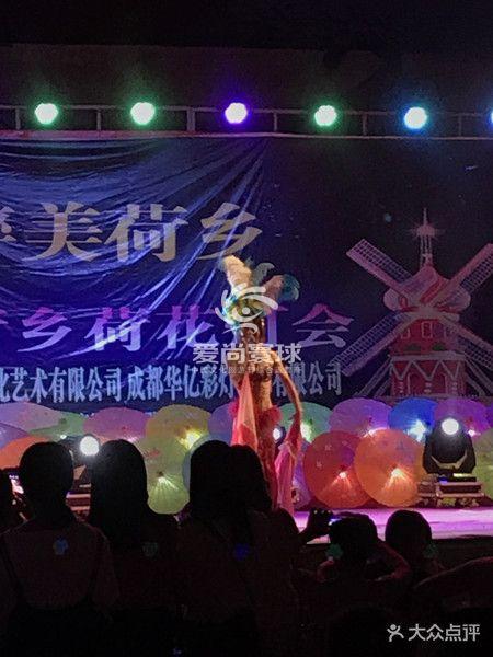 爱尚寰球_中国文化旅游节综合运营商400-8383-905|2017第二届成都·蜀水荷乡荷花节